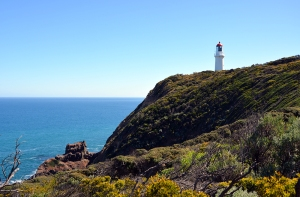 cape schanck - gallery
